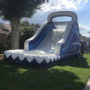 18ft Blue waterslide ($200)